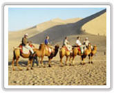 dunhuang muslim dating site Around the mosque is the muslim  then you will be transferred to xian airport to take your flight to dunhuang  a fascinating site determined to be dating.